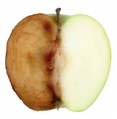 Oxidation in Action on an Apple